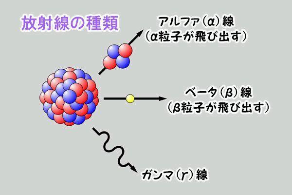 201108110.jpg