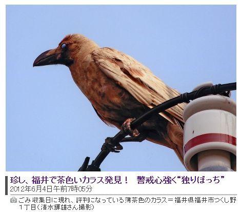 2012060411.jpg