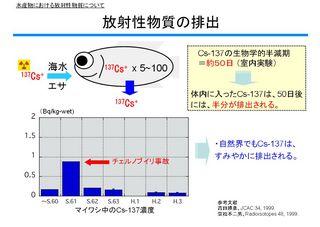 2013070307.jpg