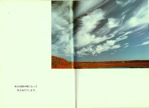 「あの大きな空を」は原詩にないが、ぼくの本の写真(上)からイメージをパクったに違いない。「ですます」調で訳したのも、写真と組み合わせたのもパクリ。